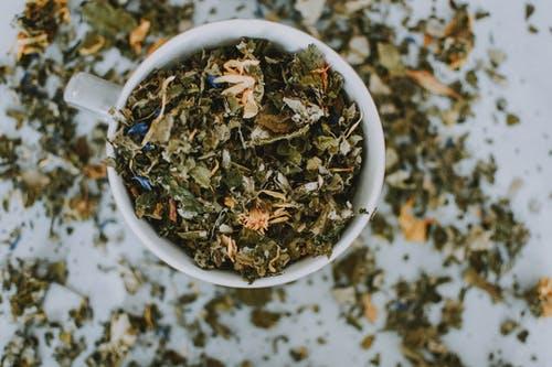 O Uso Caseiro de Folhas Frescas ou Secas de Plantas Medicinais